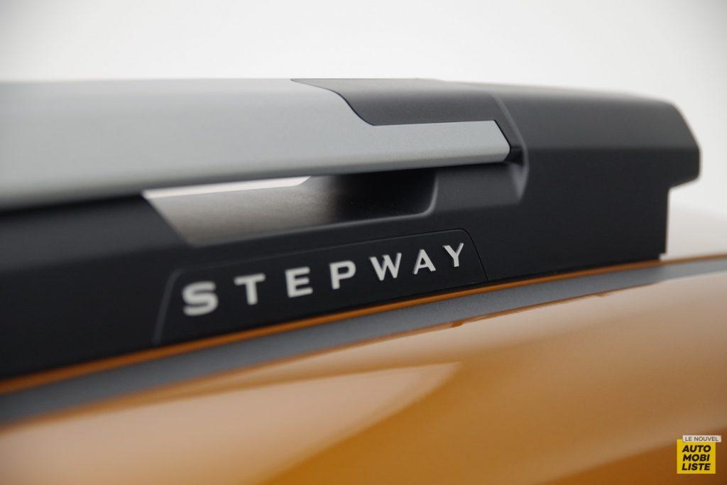 Dacia Sandero Stepway 2020 LNA FM 6