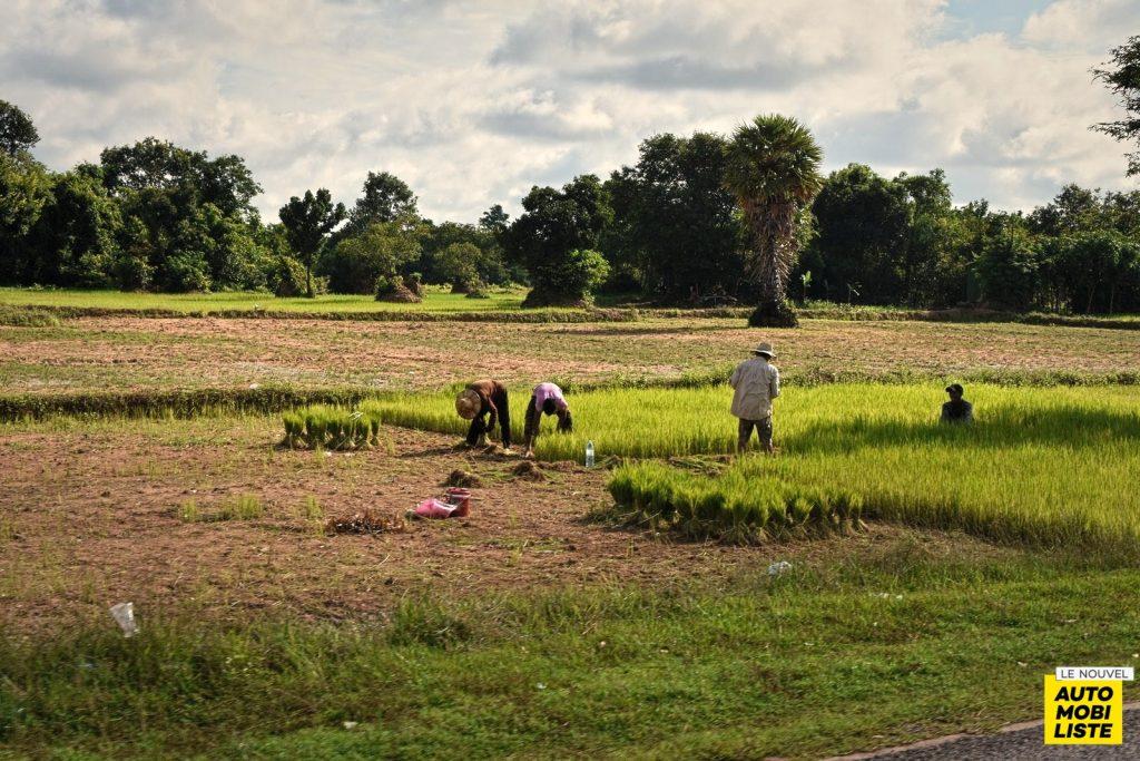 Road Trip Paysage Cambodge Le Nouvel Automobiliste 09