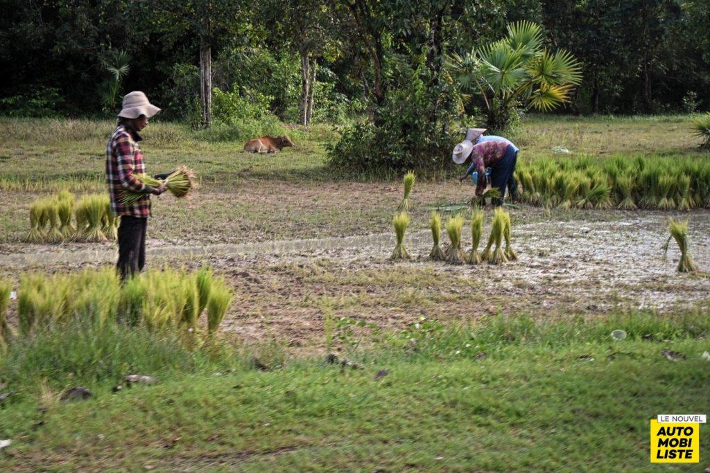 Road Trip Paysage Cambodge Le Nouvel Automobiliste 10