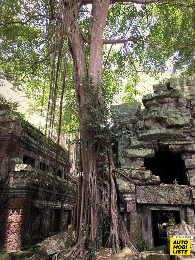 Road Trip Paysage Cambodge Le Nouvel Automobiliste 41